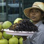 Most Horrifying Foods in Indochina