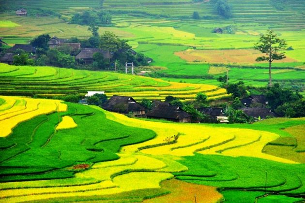 north vietnam weather and climate