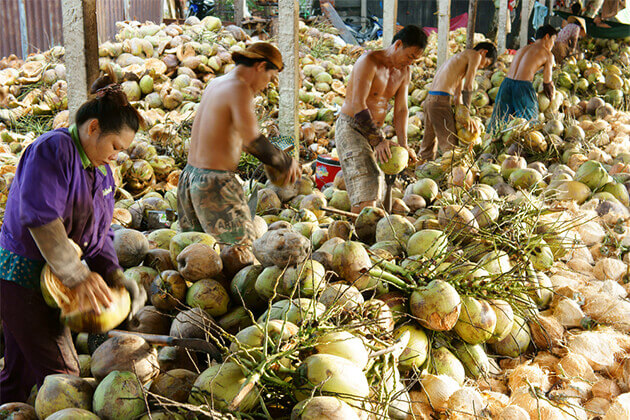 Coconut Factory Mekong Delta - Tour to Southeast Asia 19 Days