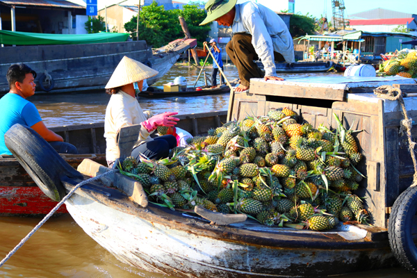 Local boat with full of fruit and vegetable in Cai Rang Floating Market