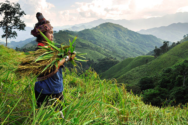 Muang Khua in the day of crop indochina tours