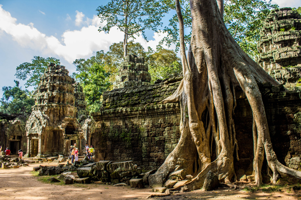 The temple of Ta Prohm - 27 Day Tour in Vietnam and Cambodia