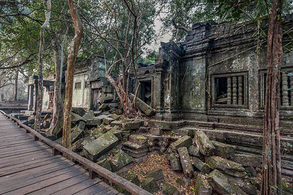 The tourist boardwalks within Beng Mealea temple compound
