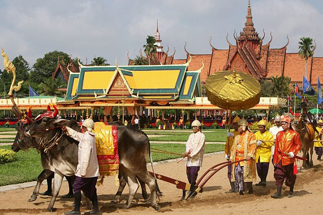 Royal Ploughing Ceremony cambodia festivals
