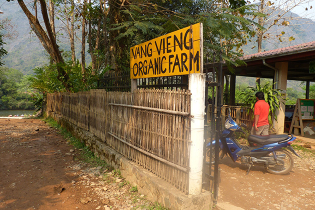 Vang Vieng Organic Farm is simultaneously regarded as an organic farm