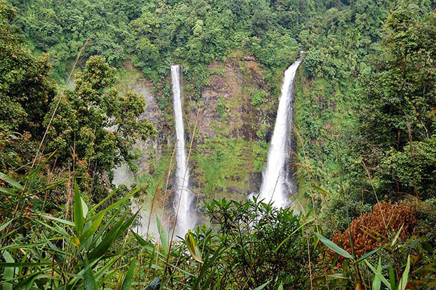 Watch the majestic waterfall in the Bolaven Plateau
