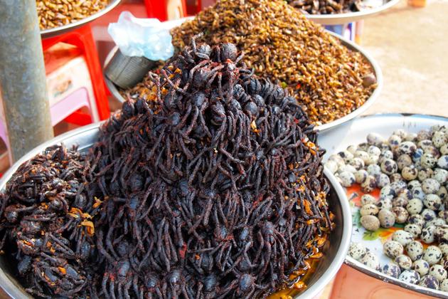 Fried Tarantulas Spider Cambodia