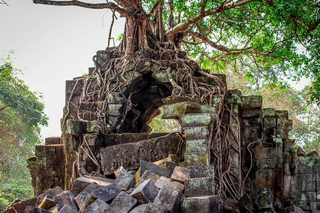 Beng Mealea Vietnam and Cambodia 23 Day Tour