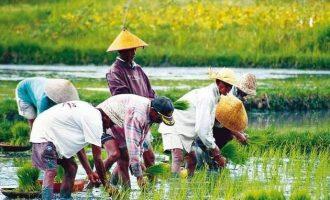 Essential Vietnam & Cambodia – 23 Days