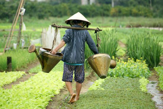 Hoi An Farming and Eco Tour - Indochina Trips