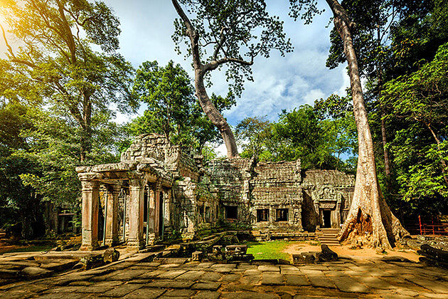 Ta Prohm Temple Cambodia Vietnam 21 Day Vacation