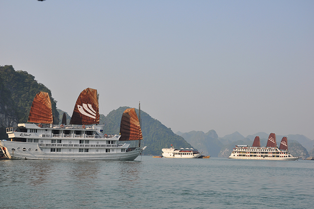 Cruise along Majestic Halong Bay
