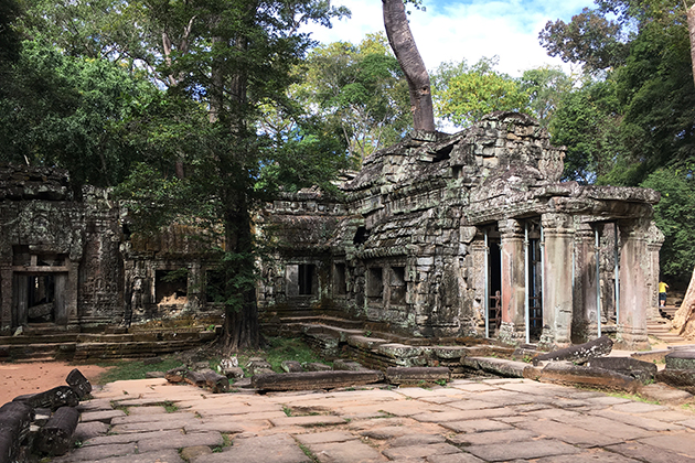 Ta Prohm Temple - Visit Cambodia & South Vietnam in 11 Days