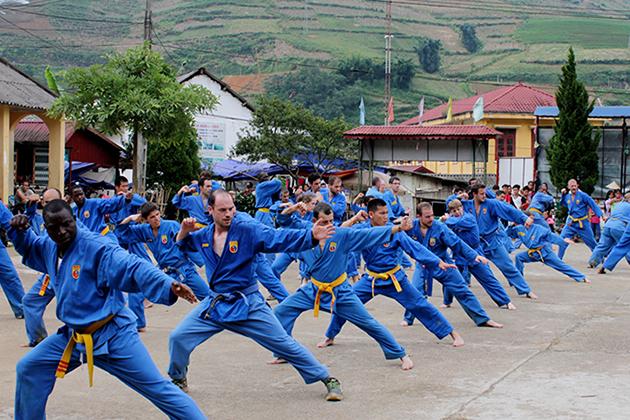Viet Vo Dao - Vietnam Martial Art