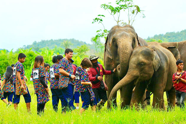 Kanta Elephant Sanctuary Discovery