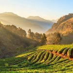 chiang mai indochina tours