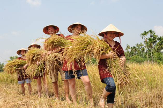 hoi an farming tour indochina tours