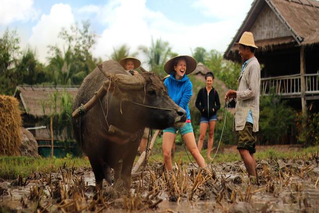 local tourism responsible travel