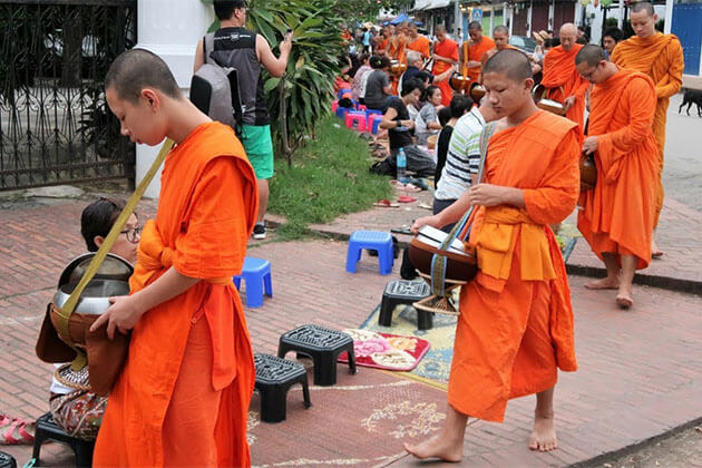 luang prabang morning alms giving ritual