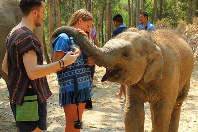 Elephant Jungle Sanctury - Southeast Asia Tours