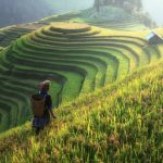 sapa indochina tours