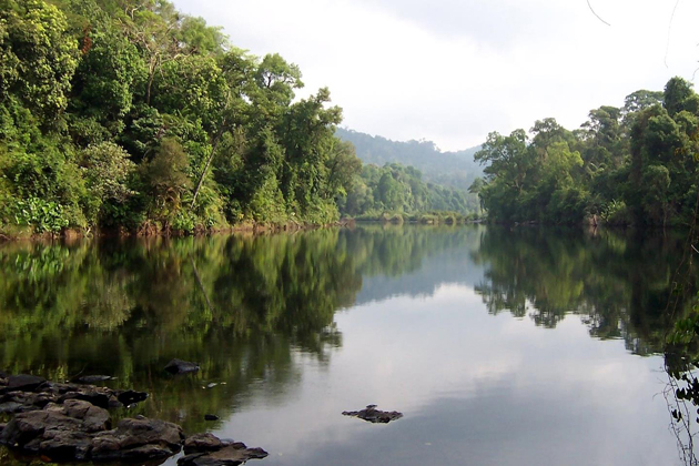 Cardamom Mountains cambodia
