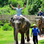 Elephant Village Camp