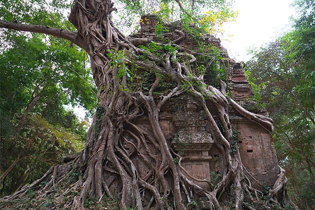 Sambor Prei Kuk Temple Indochina Travel