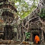 ta prohm - Cambodia Laos 9 Day Trip