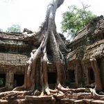 Spirit of Vietnam and Cambodia Tour - Ta Phrom