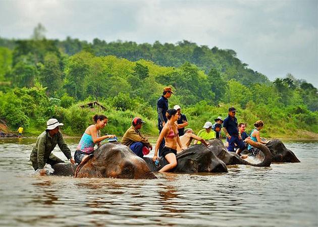 Elephant Experience Laos - North Vietnam Laos 11 Days