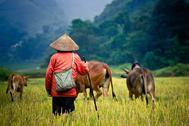 Cambodia Rural Discovery Tours