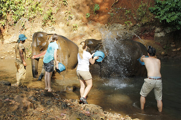 Elephant Valley Project ecotourism experience in cambodia