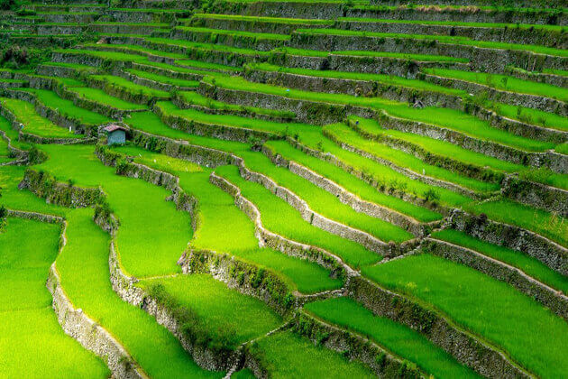 Ifugao Rice Terraces Multi-country southeast asia holiday packages