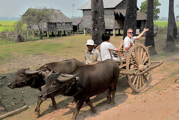Ox-cart ride through a village surround tonle sap lake