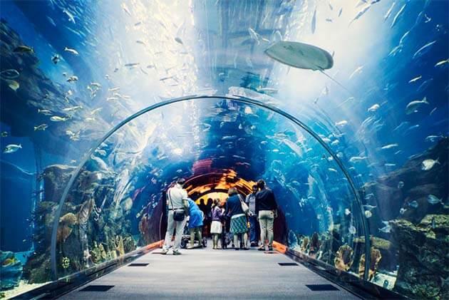 Tri Nguyen Aquarium Nha Trang - Vietnam Laos 20 day Trip