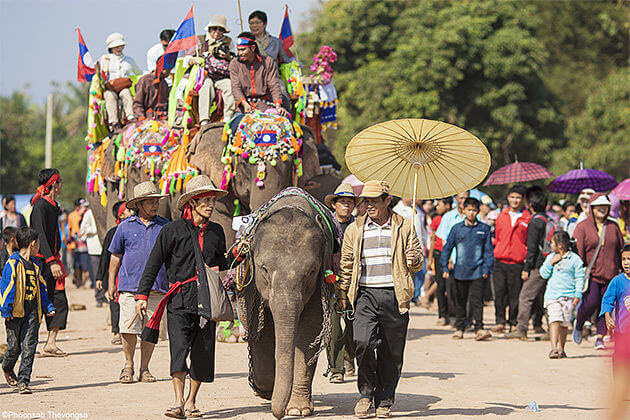 elephant performing circus vietnam laos cambodia 3 week vacation