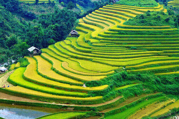 ha giang rice terrace vietnam laos cambodia tour 4 weeks