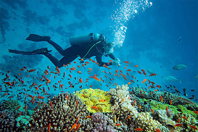 scuba diving cambodia laos tour packages