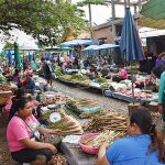 Local Market in Vang Vieng