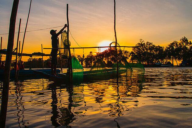 Net Fishing in Mekong Delta