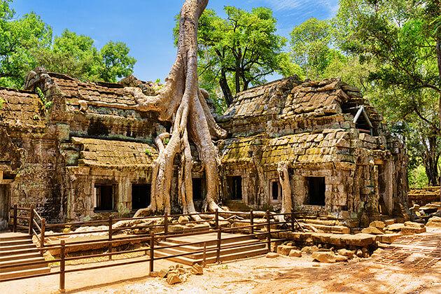 Ta Prohm Temple Cambodia Vietnam Laos Trip